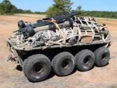 Multi-Utility Tactical Transport (MUTT) 1