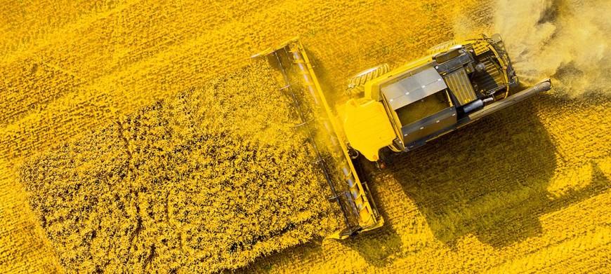 В этом году Cognitive Pilot произведет пять тысяч автопилотов для умной сельхозтехники, 20% на экспорт
